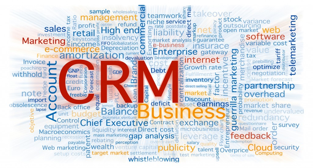 CRM Summary Word map