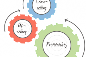 Profitable Upselling, Cross-Selling & Downselling
